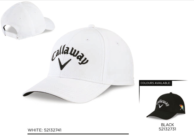 Corporate Cap - Front logo