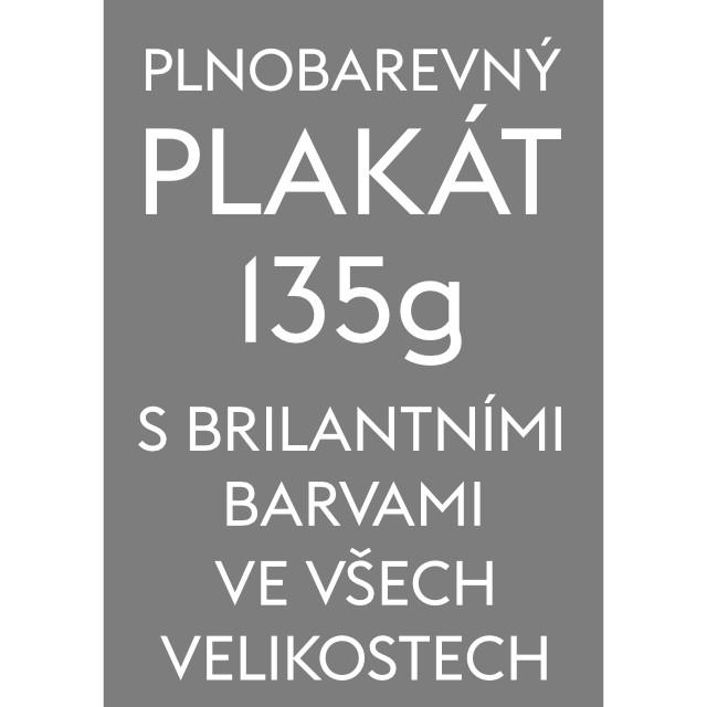 Plnobarevný plakát Formát A5 (148 x 210 mm)
